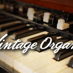 Native Instruments – Vintage Organs Logo